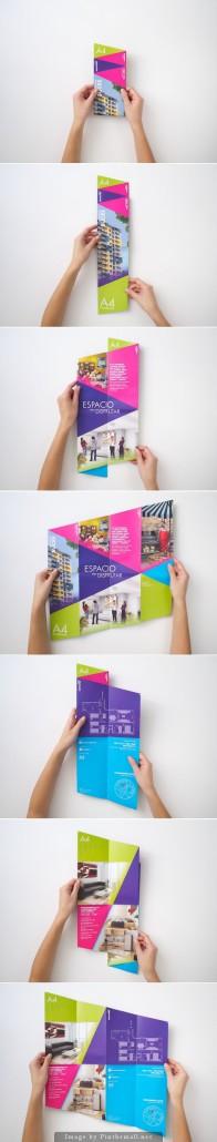 brochure1-196x1030