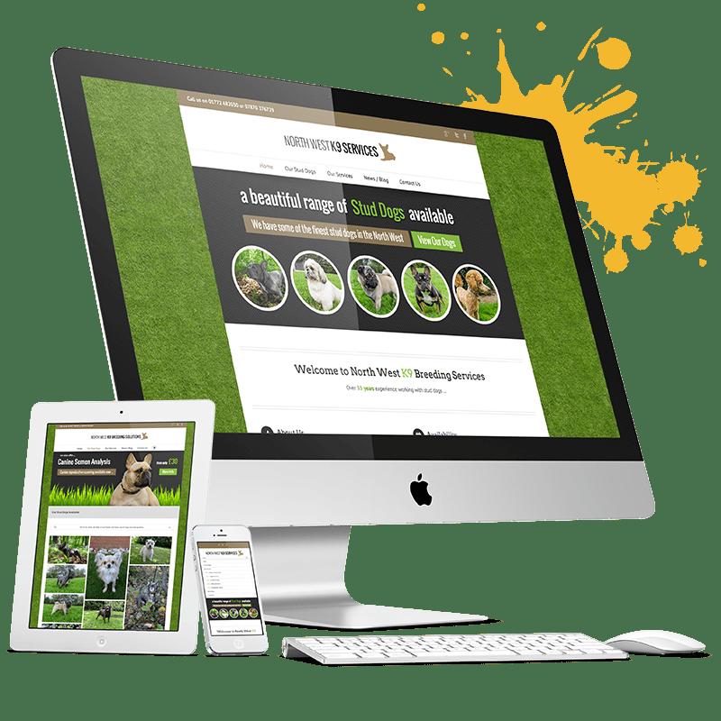 website design and developers in Lagos Nigeria